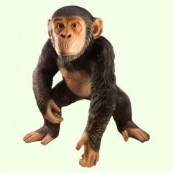 Большая копилка для денег Шимпанзе (Б)
