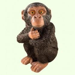 Большая копилка для денег Шимпанзе (Ср)