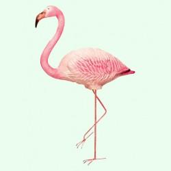 Фигуры птиц (101)